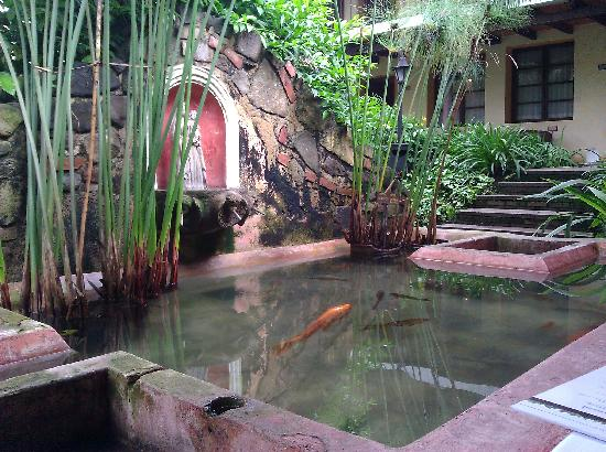 Hotel Las Farolas: Koi Pond Fountain