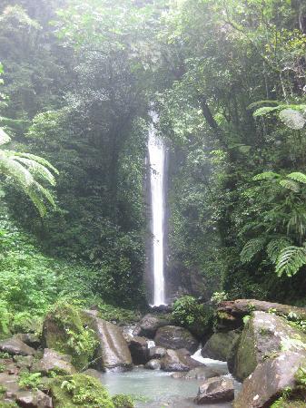 Dumaguete City, Philippines : The Casaroro Falls