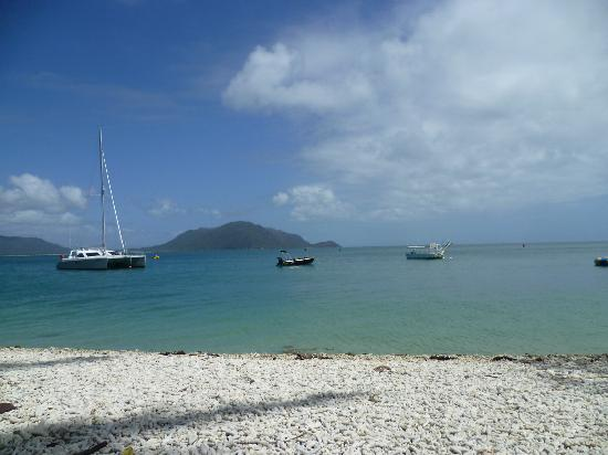 Ibis Styles Cairns: the view from fitzroy island
