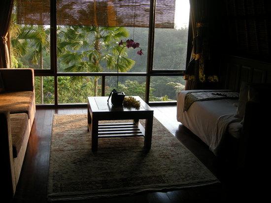 Kupu Kupu Barong Villas and Tree Spa: main living area