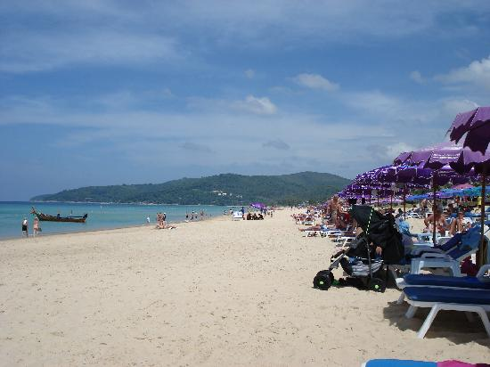 ‪‪Phuket Orchid Resort & Spa‬: Beach, only 50 metres from hotel entrance‬