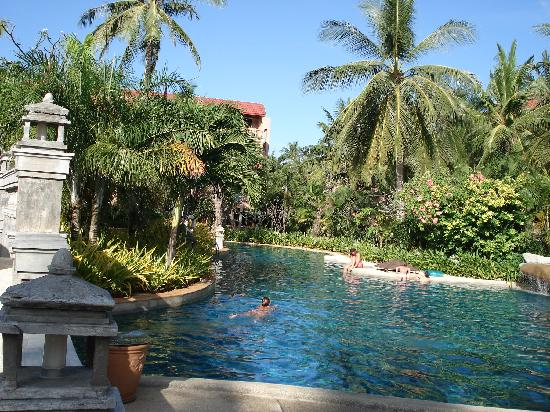 Phuket Orchid Resort & Spa: Hotel pool again
