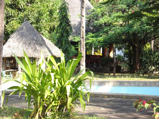 Giriamalodge Mystic Garden : giriamalodge swimming pool and bar