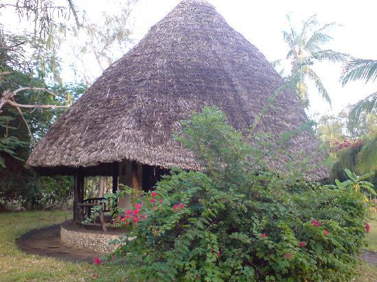 Giriamalodge Mystic Garden : giriamalodge accomodations