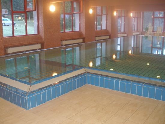 JUFA Hotel Mariaell - Sigmundsberg: Delfinarium im JuFa Sigmundsberg
