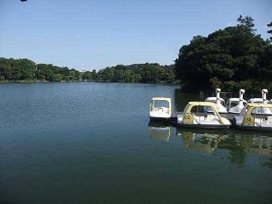 Ota, Japan: 洗足池1