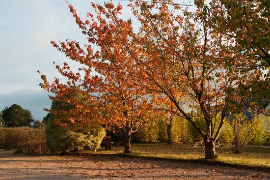 Residence Les Cotes d'Armor : Parking aux couleurs automnales