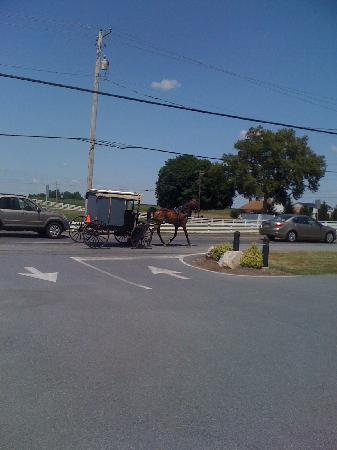 Lancaster County, PA: Amish People