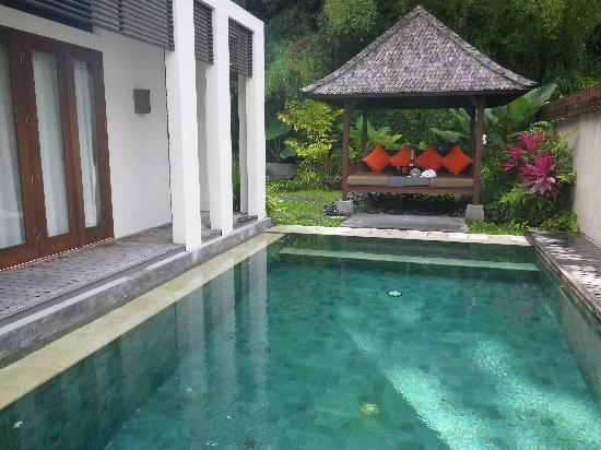 The Samaya Bali Ubud: ビィラ内プール