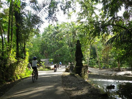 The Samaya Bali Ubud: サイクリング