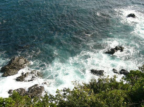 Hotel Ijikaso : ベランダからの風景、真下に青い海が見えた。