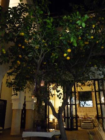 Dar Charkia: the courtyard at night