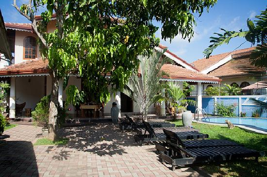 Serendib Guest House: The Guesthouse and pool