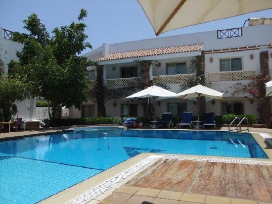 Camel Dive Club & Hotel: still nobody in the pool!