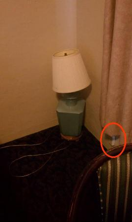 Pacific Shores Inn: No phone in outlet & broken lamp on floor