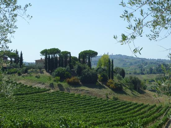 Tenuta Mormoraia: the estate
