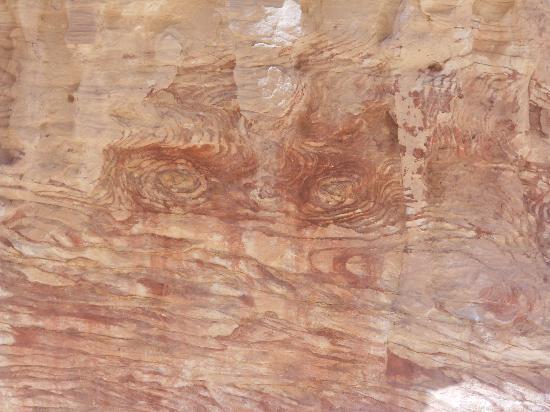 Sinai Safari Adventures : Colored Canyon, face on rock