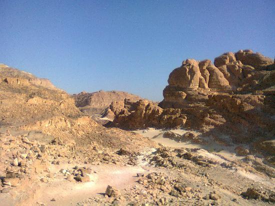 Sinai Safari Adventures : Vue vers l'oasis Ain khudra
