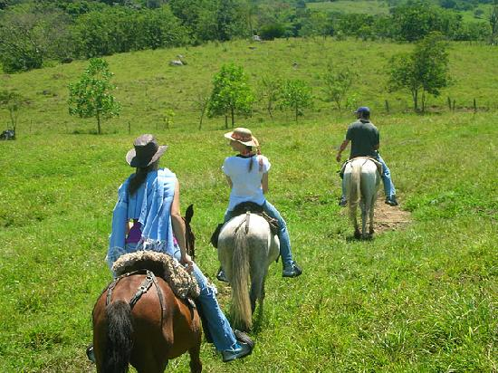 Casa Estudio Su Casa Colombia: Horseback riding at the finca