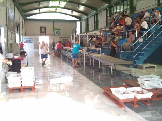 Garrucha, España: Daily fish auctions