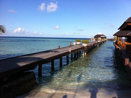 Olhuveli Beach & Spa Maldives : The pier