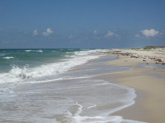 Saint George Island State Park: Seclusion Pure