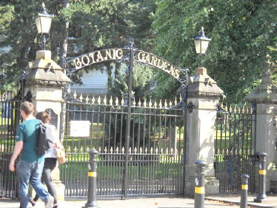 Malone Lodge Hotel & Apartments: Botanic Gardens
