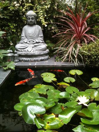 Maison Zen: the garden