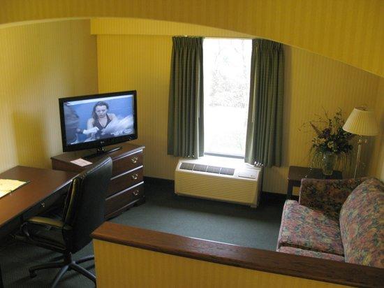 Comfort Inn: Living room tv