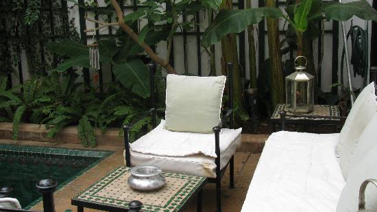 Dar Vedra: Salon bassin