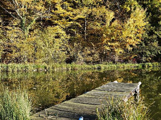 Le Grand Menasson : L'étang et son ponton