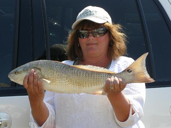 Everglades Fishing Charters: Another Good Redfish