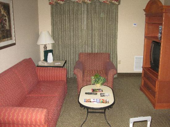 Hawthorn Suites by Wyndham Orlando Lake Buena Vista: Living area