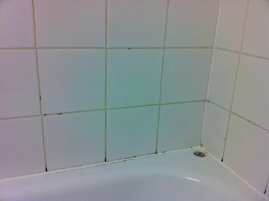 Kyriad Marne-la-Vallee Torcy : Black mould in the shower