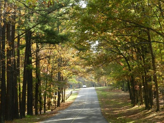 David Crockett State Park: leaving the park
