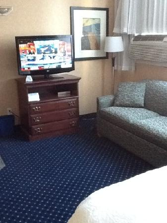 BEST WESTERN PLUS Suites Downtown: second floor standard room: tv and sofa bed