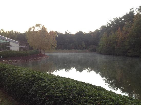 Peachtree City, Τζόρτζια: View of the lake in the morning