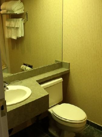 BEST WESTERN PLUS Suites Downtown: second floor standard room: water closet