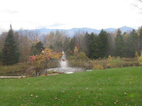 Stowe Meadows: This was a view from our bedroom of the beautiful lawn and water fountain on the front lawn