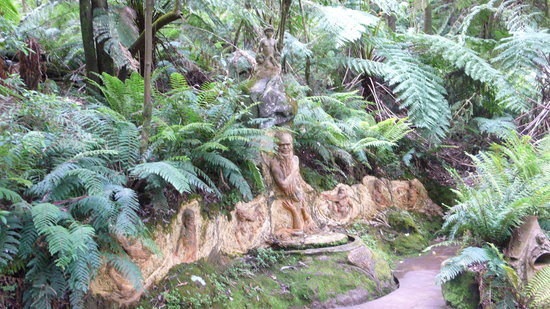 Mount Dandenong, Avustralya: mother earth