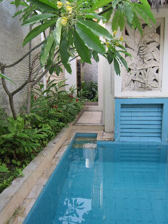 Kuta Lagoon Resort & Pool Villa: Villa Pool