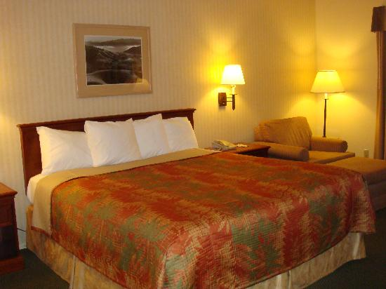 Best Western Stagecoach Inn: Room with King bed