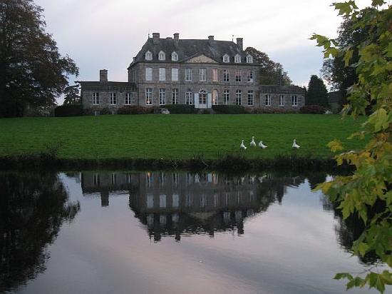 Château de Bouceel: Bouceel with ducks and reflection