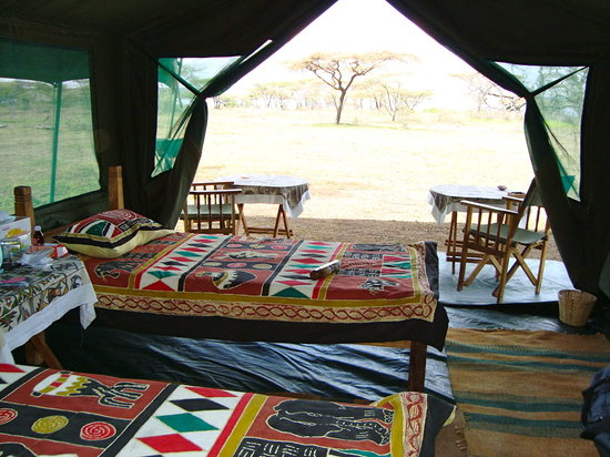 Ndutu Wildlands Camp : Room