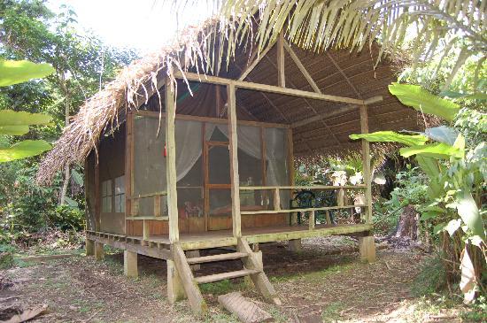 Huaorani Ecolodge: Mi cabaña en el Ecolodge