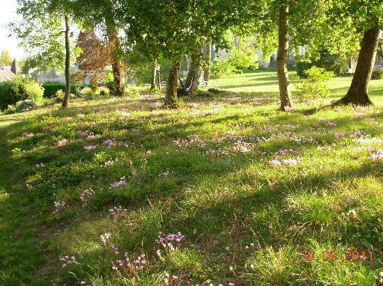 Chateau de La Celle Guenand: Gardens