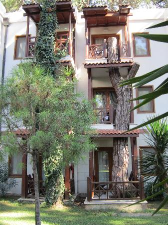 Voyage Sorgun: Balcony built around tree