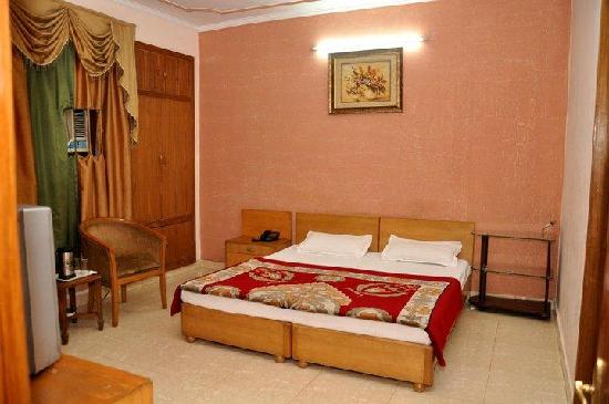 Hotel Pitrashish Grand: Superior Room