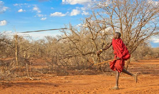 A Masai spear throwing demonstration - Picture of