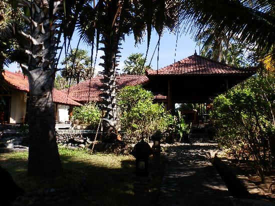 Kebun Impian: veel zon en schaduw